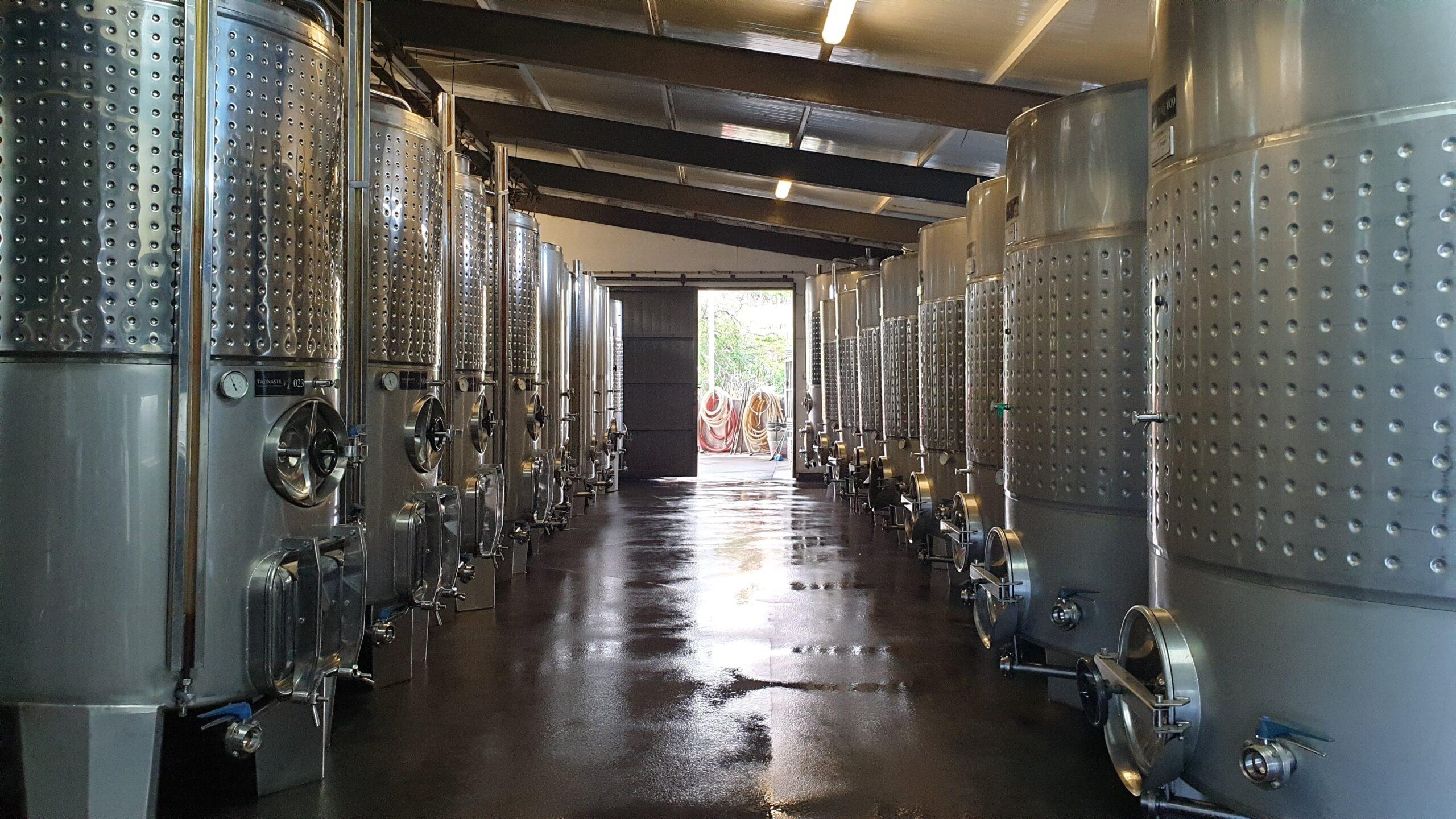 Nos adentramos en la Bodega Tajinaste para descubrir la importancia del vino en la historia de las islas y hacer una pequeña cata de vinos.